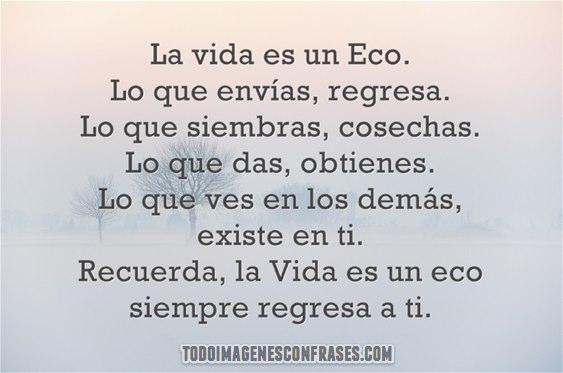 La-vida-es-un-Eco