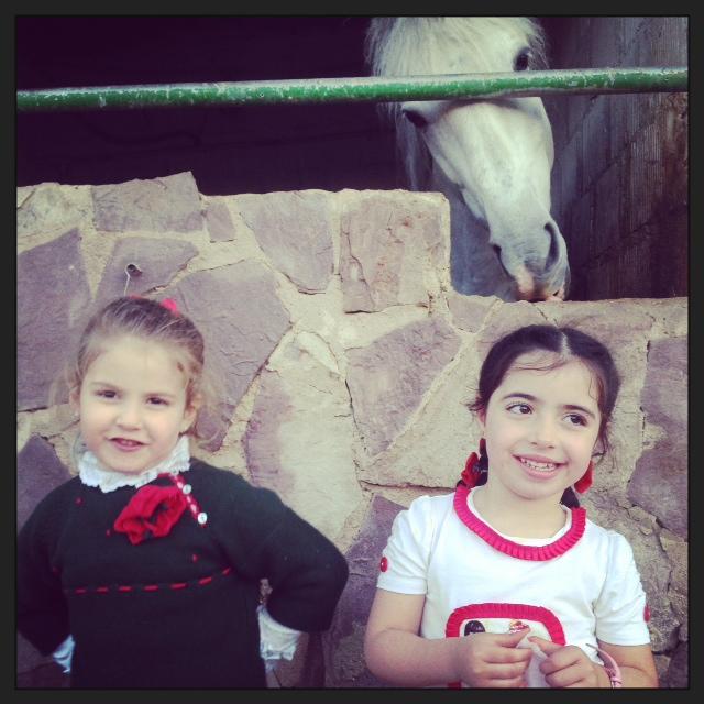la de caballos que tenian... eran preciosos...